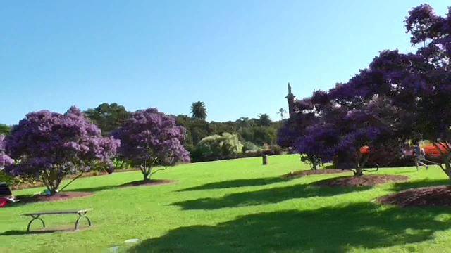 centennialpark0