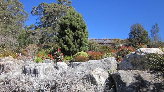 ブルーマウンテンズ植物園