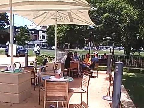 シドニー 公園 カフェ アウトドア グリーブ