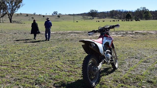 オーストラリア農業視察 牧場