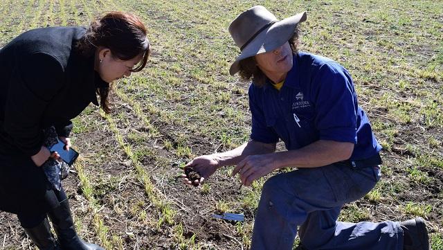 オーストラリア農業視察
