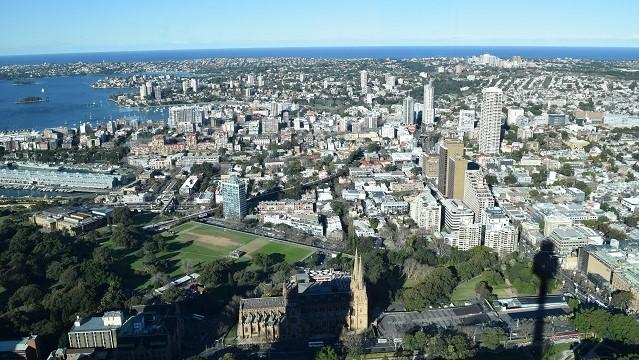 シドニータワーからの景色